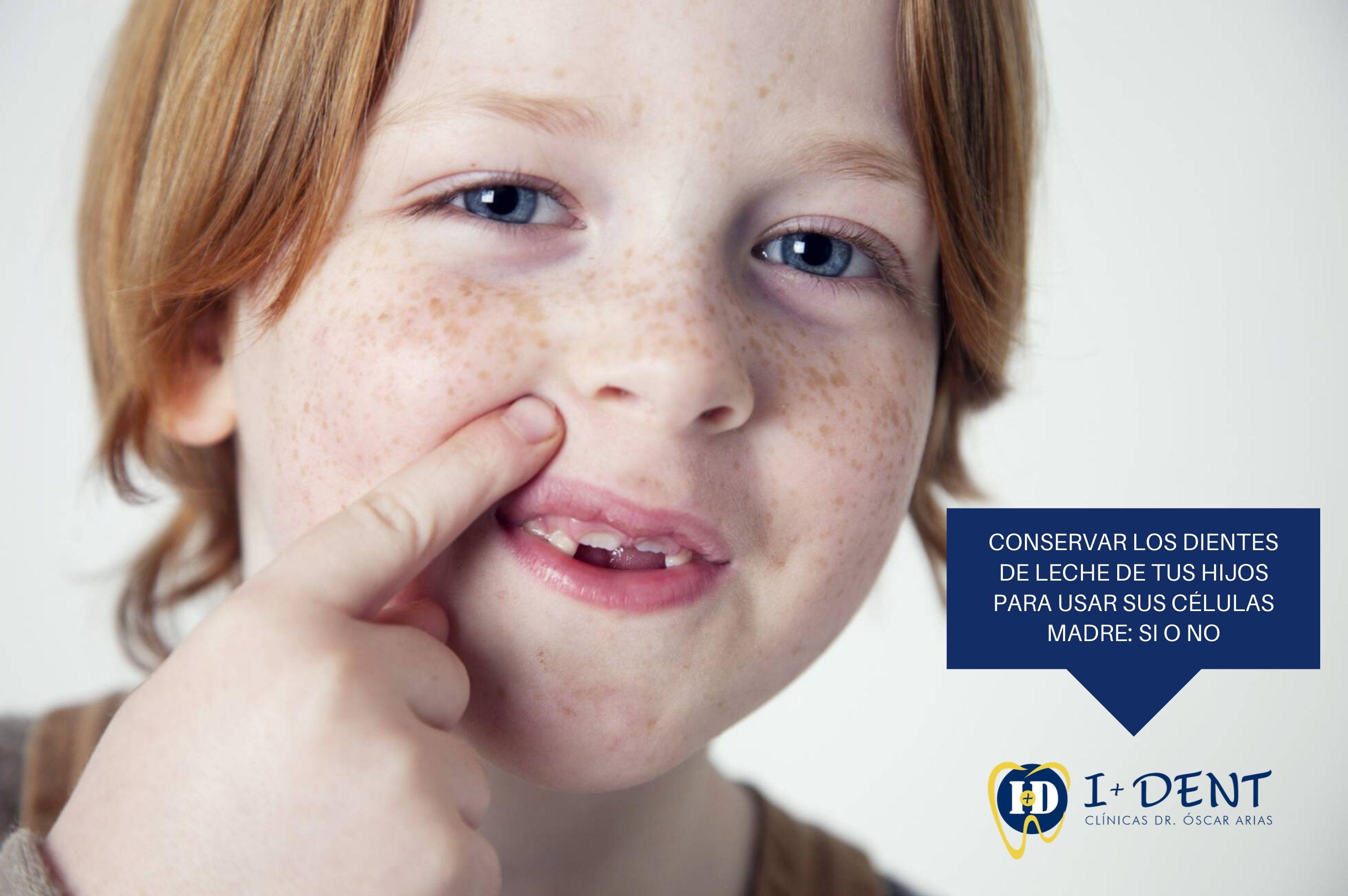 Conservar los dientes de leche de tus hijos para usar sus células madre: sí o no